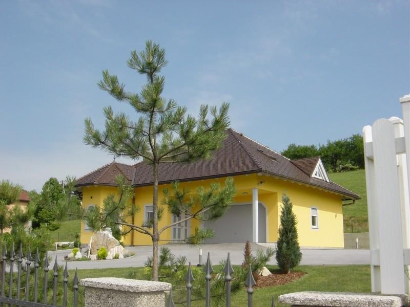 Ordine Progettazione di costruzione ed architettura delle case e cottage