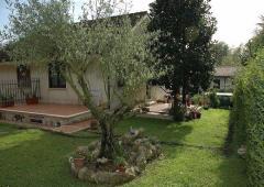 Villa / Villetta in Affitto a Sabaudia