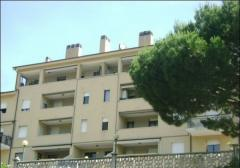 Appartamento in Affitto a Imperia - 5 locali