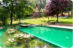 La piscina biologica o biolago
