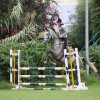 Organizzazione gare di salto ad ostacoli