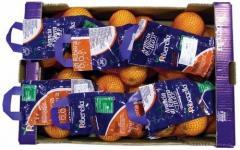Confezione arance in D-Pack
