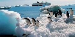 Hurtigruten: Antartide, il continente dei ghiacci