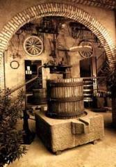 Museo agricolo e del vino Ricci Curbatro
